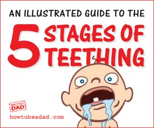5 Stages of Teething An Illustrated Guide