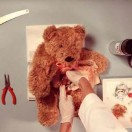 teddy-has-an-operation-video-tn
