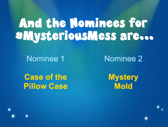 mysteriousmess-nominees