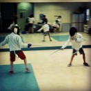 fencing-honeas-tn