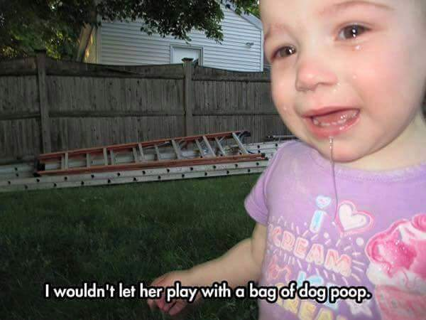 reasonmykidiscrying-dogpoop