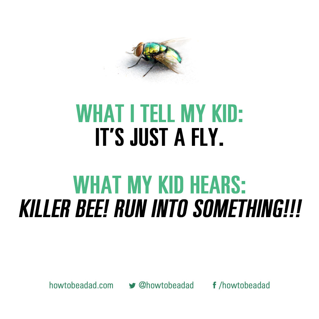 what-i-tell-my-kid-killerbee