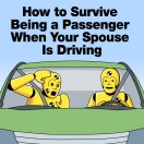 suviving-being-a-passenger-tn