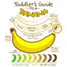 Toddlers-Guide-to-a-Banana-tn